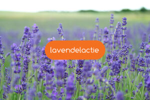 Actiebox: lavendel box